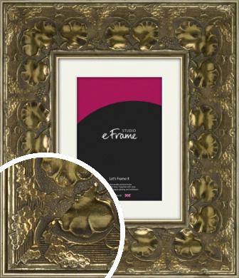 Floral Gold Picture Frame & Mount (VRMP-1328-M)