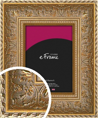 Luxurious Gold Picture Frame (VRMP-567)
