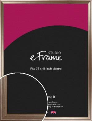 Timeless Silver Picture Frame, 36x48