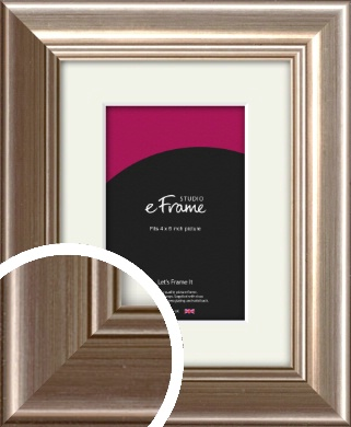 Timeless Silver Picture Frame & Mount, 4x6