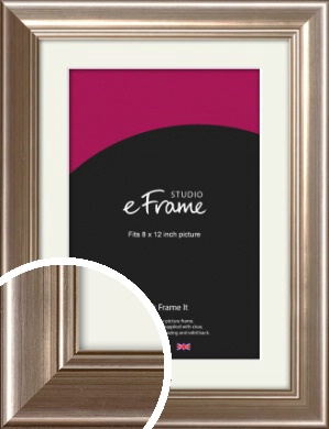 Timeless Silver Picture Frame & Mount, 8x12