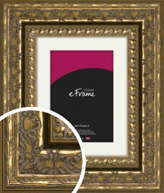 Lavish Gold Picture Frame & Mount (VRMP-1361-M)