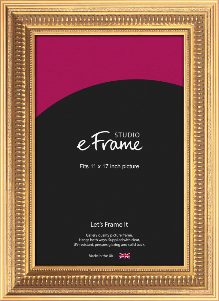 Extravagant Gold Picture Frame 11x17 Eframe