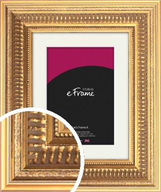 Extravagant Gold Picture Frame & Mount (VRMP-721-M)