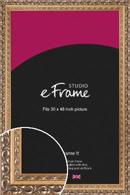 Multi Tone Rococo Gold Picture Frame, 30x48