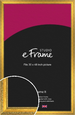 Overt Gold Picture Frame, 30x48