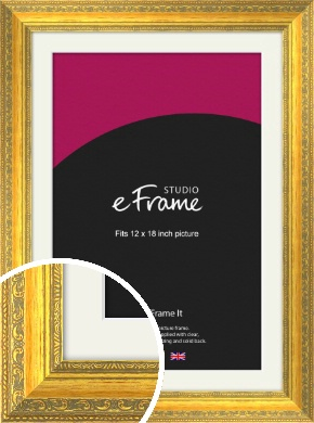 Overt Gold Picture Frame & Mount, 12x18
