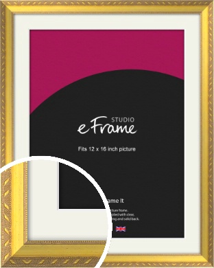 Repeating Decorative Pattern Gold Picture Frame & Mount, 12x16