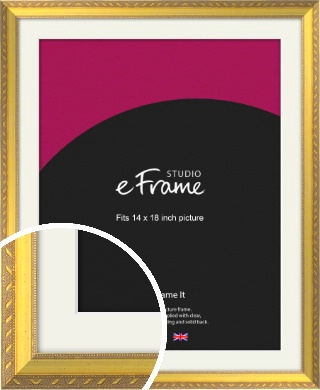 Repeating Decorative Pattern Gold Picture Frame & Mount, 14x18