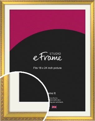 Repeating Decorative Pattern Gold Picture Frame & Mount, 18x24