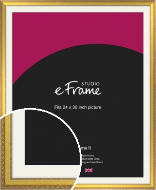 Repeating Decorative Pattern Gold Picture Frame & Mount, 24x30