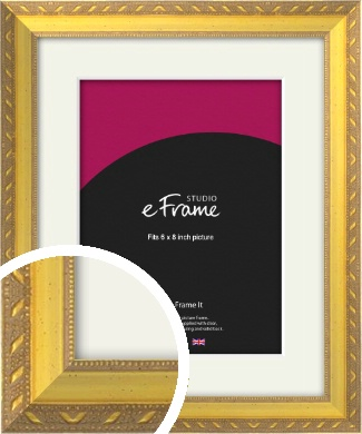 Repeating Decorative Pattern Gold Picture Frame & Mount, 6x8