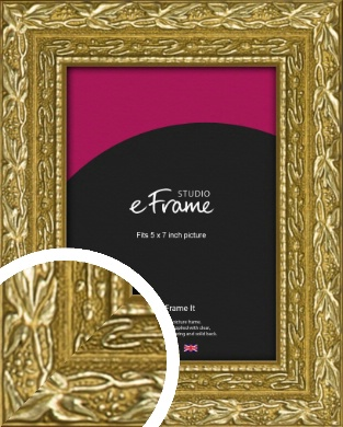 Arabesque Gold Picture Frame, 5x7