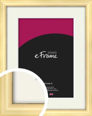 Stylish Gold Picture Frame & Mount (VRMP-A048-M)