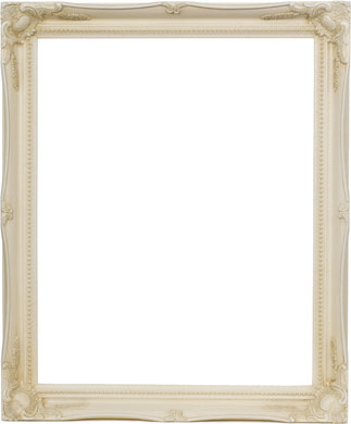 Decorative Picture Frame Clarity+ Perspex, 8x10