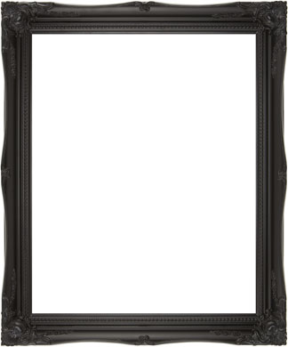 Decorative Picture Frame Clarity+ Perspex (816167100)