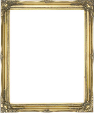 Decorative Picture Frame Clarity+ Perspex (816693100)