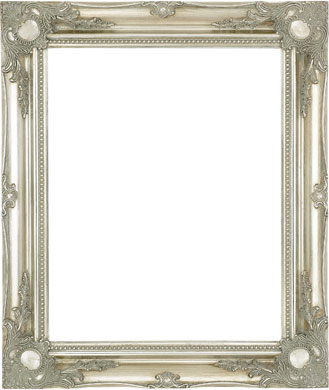 Decorative Picture Frame Clarity+ Perspex, 24x48