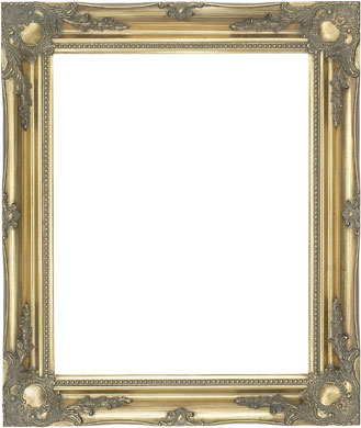 Decorative Picture Frame Clarity+ Perspex (829693100)