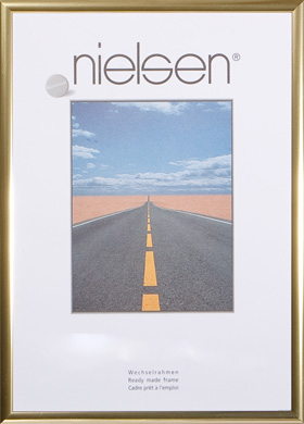 Nielsen Polished Gold Pearl Frames