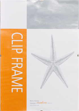 Nielsen Clear Starfish Glass Clip Frames