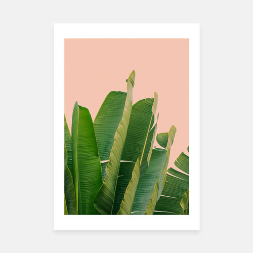 Banana leaves art print